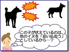 bark-function
